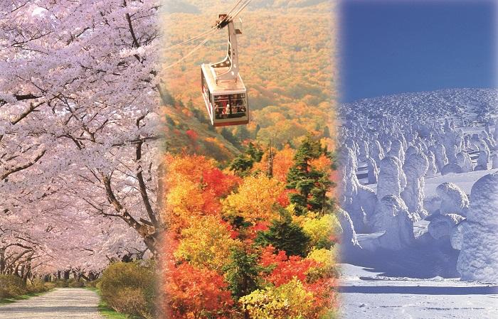 季節を愛でる旅